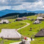 Incentive Slovenia