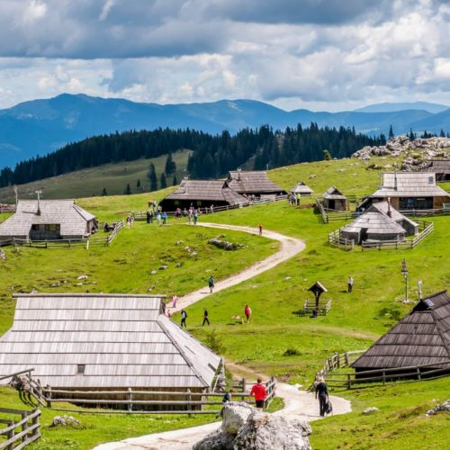 Kamnik and Velika Planina Tour