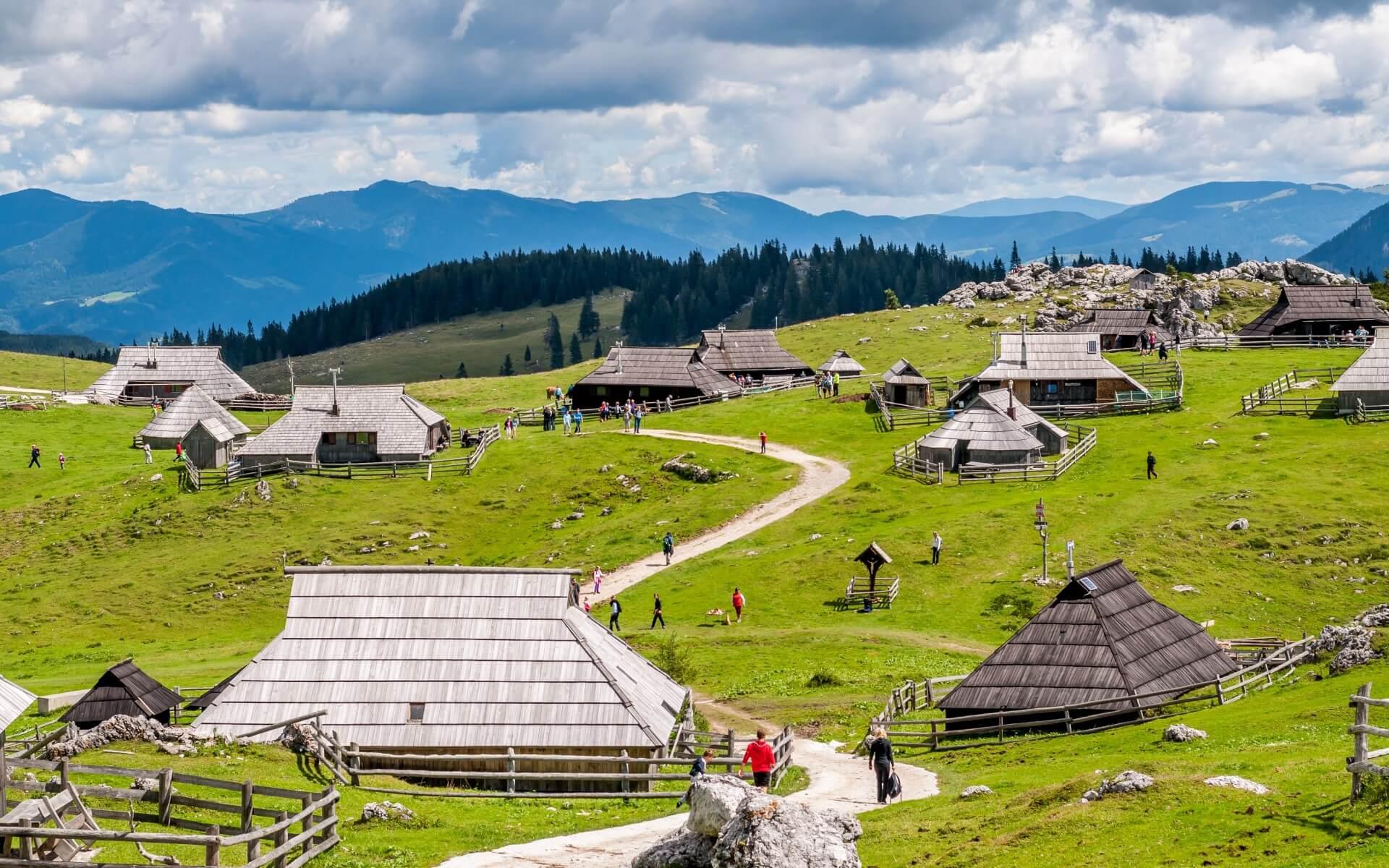 Incentive in Slovenia