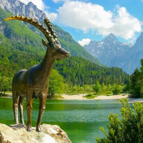Naturaleza, gastronomia y diversidad hacen que Eslovenia sea un pais grande!